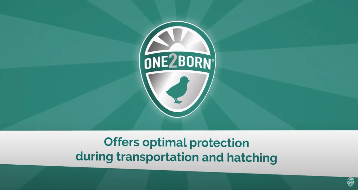 One2Born offers optimal protection during transportation and hatching