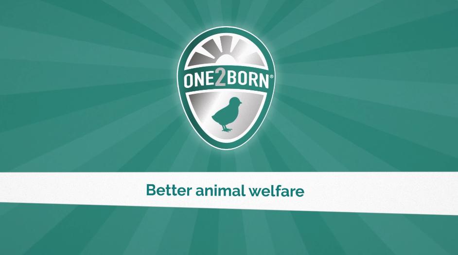 One2Born provides more animal welfare